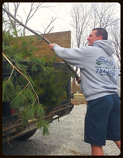 Trash removal Indianapolis, Hauling Indianapolis, Junk Removal Indianapolis, trash removal service Indianapolis, Garbage Service Indianapolis, Trash Pick-up Indianapolis, Landscape Removal Indianapolis, Brush Removal Indianapolis, Large Item Pickup, Best