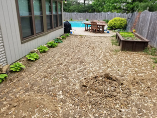 Dirt Removal Services, haul away dirt, landscape removal, landscape excvation, Schott Services, dirt removal Indianapolis, dirt removal near me, junk removal, dirt hauling, excvating soil, yard grading, mulch removal, rock removal, material spreading