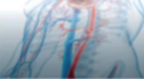 численное_моделирование_для_диагностики_аневризмы_большой_аорты