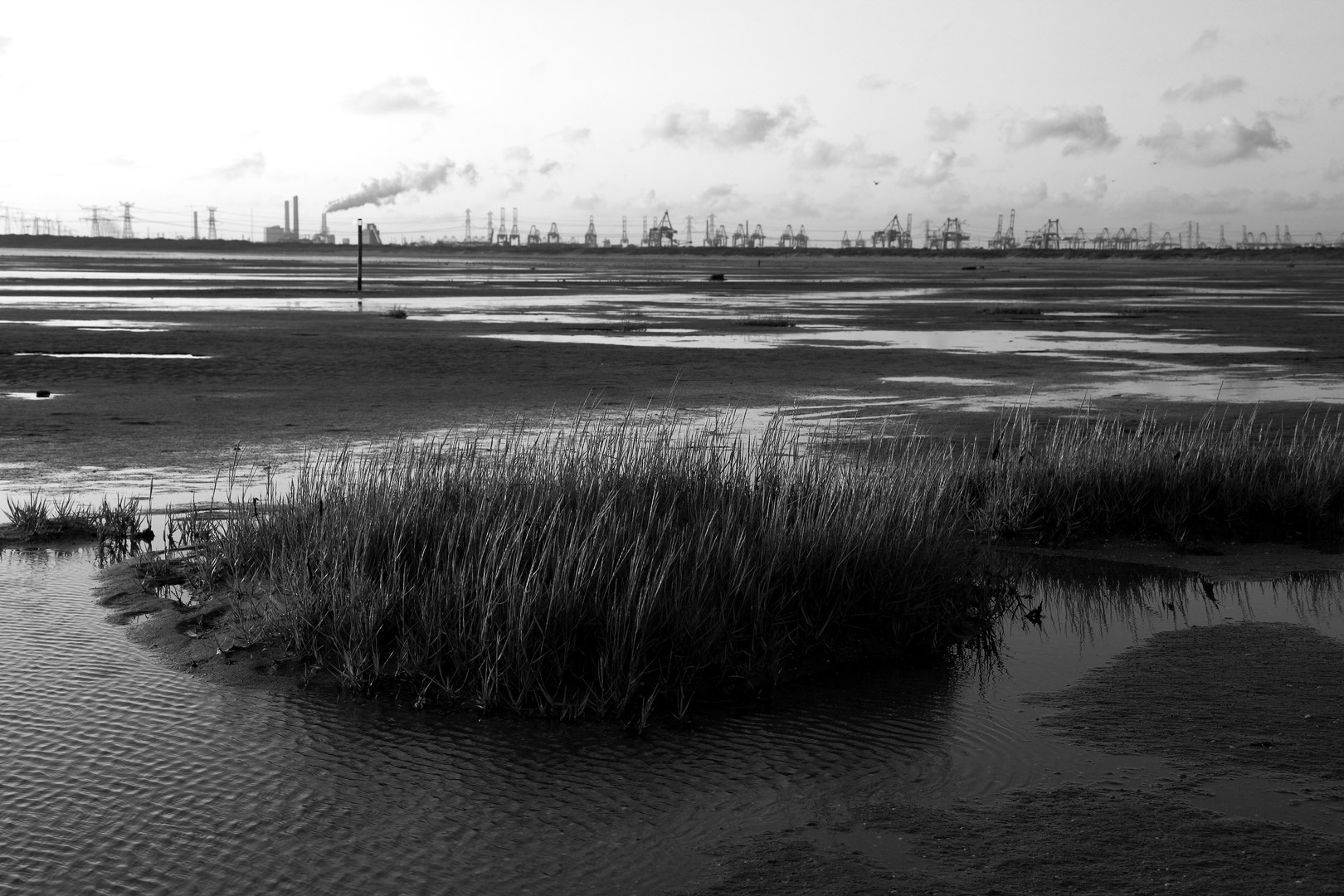 20090725 Industrie Nature.JPG