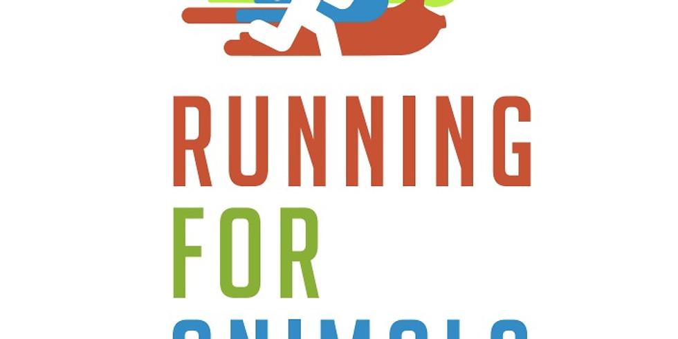 Running For Animals