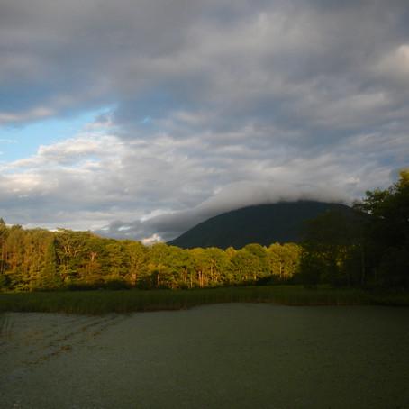 朝ランからの景色