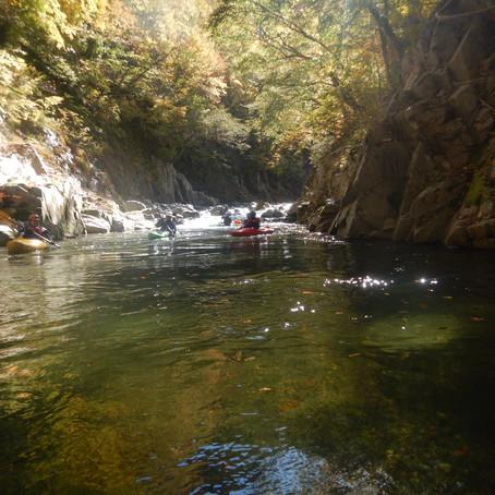 紅葉を川から楽しむ