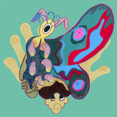 Cool Bug!