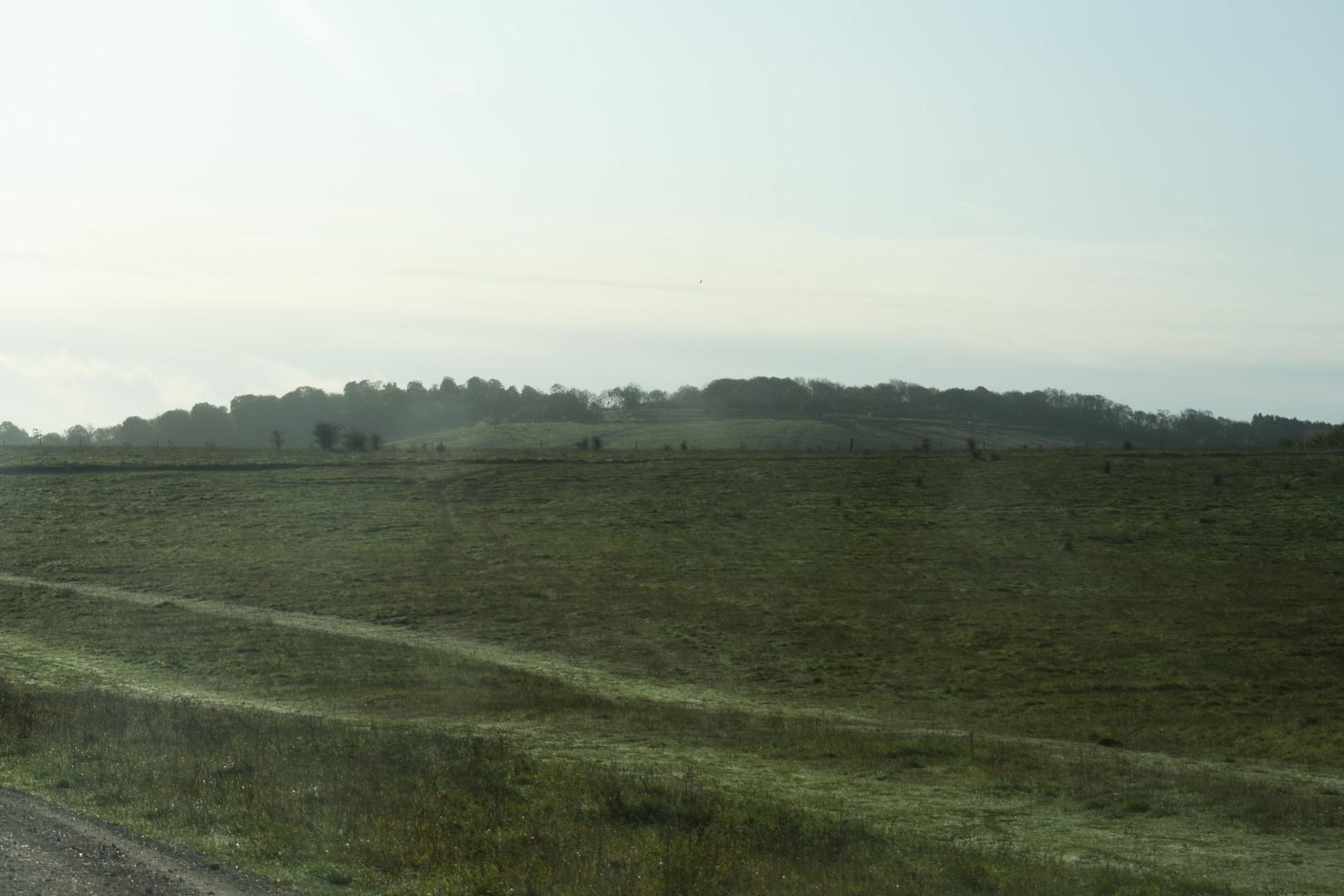 paisaje.jpg