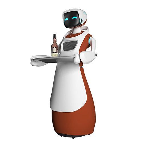 """Robot Lerato """"RoboLee"""""""