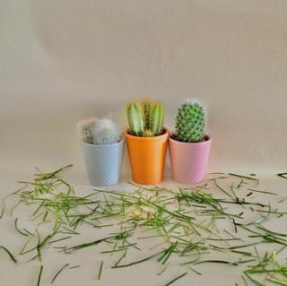 Poppy Lassnig, Year 10, Photography 2.jp