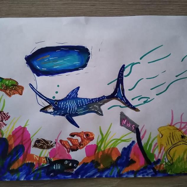 Max.  NHS Aquarium