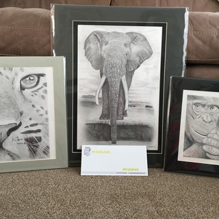 Local Artist Amy Smith Mobile - 07974536689 Email - artbyamysmith@hotmail.com