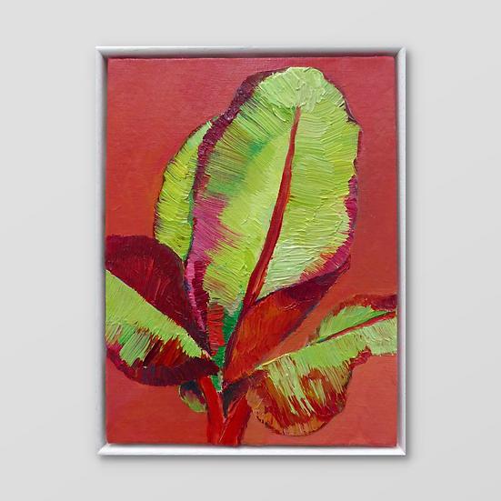 BANANA PLANT IV