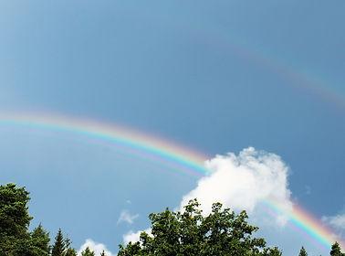 Rainbow on a sunny day.jpg