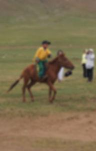 cheval mongol, nadaam, enfant, mongolie