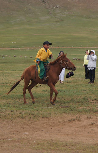 cheval mongol, nadaam, enfant, mongolie