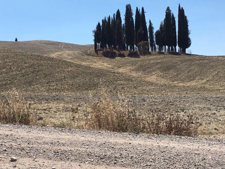 Wine Architecture #1: Podere Forte di Zambelli – Castiglione D'Orcia (SI)
