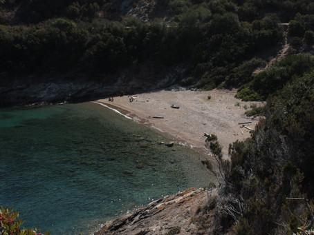 Wine Architecture #2: Fattoria delle Ripalte di Tobia Scarpa – Isola d'Elba (LI)