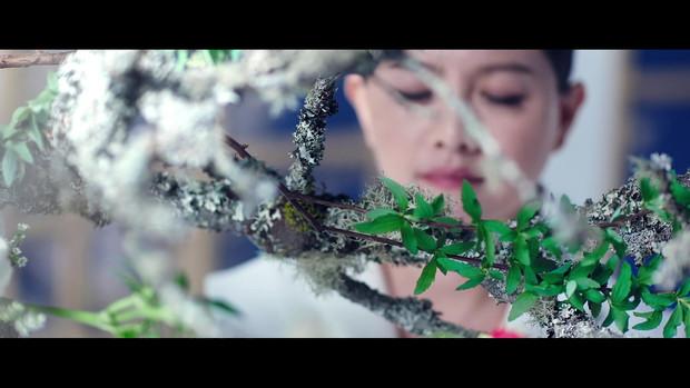 Shiseido_VP8 導演版