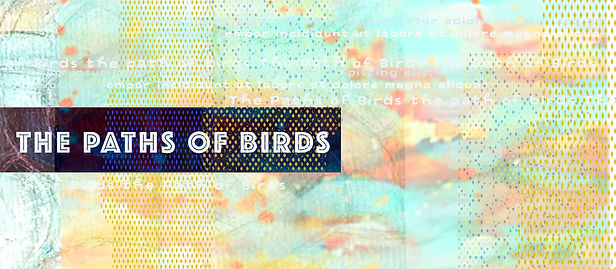 the path of birds.jpg