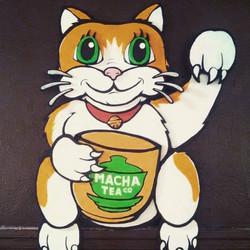 Macha Tea Lucky Cat