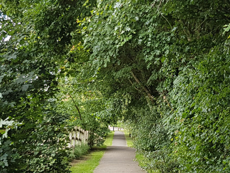 Walk near Manor Field Park