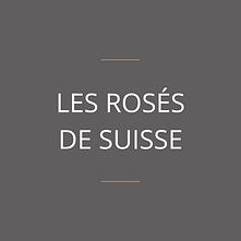 vin rosé de suisse