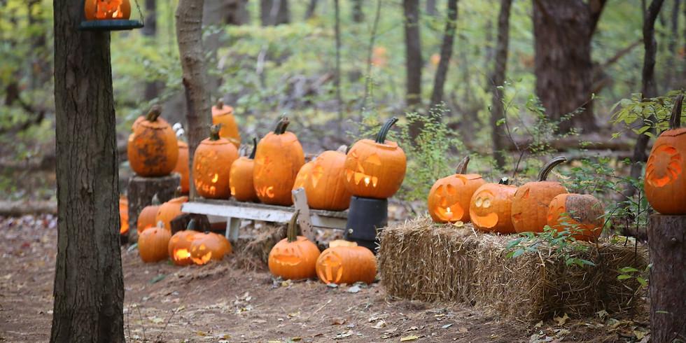 The Pumpkin Walk - 6:15 PM