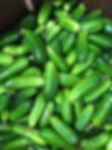 cucumbers_3.JPG