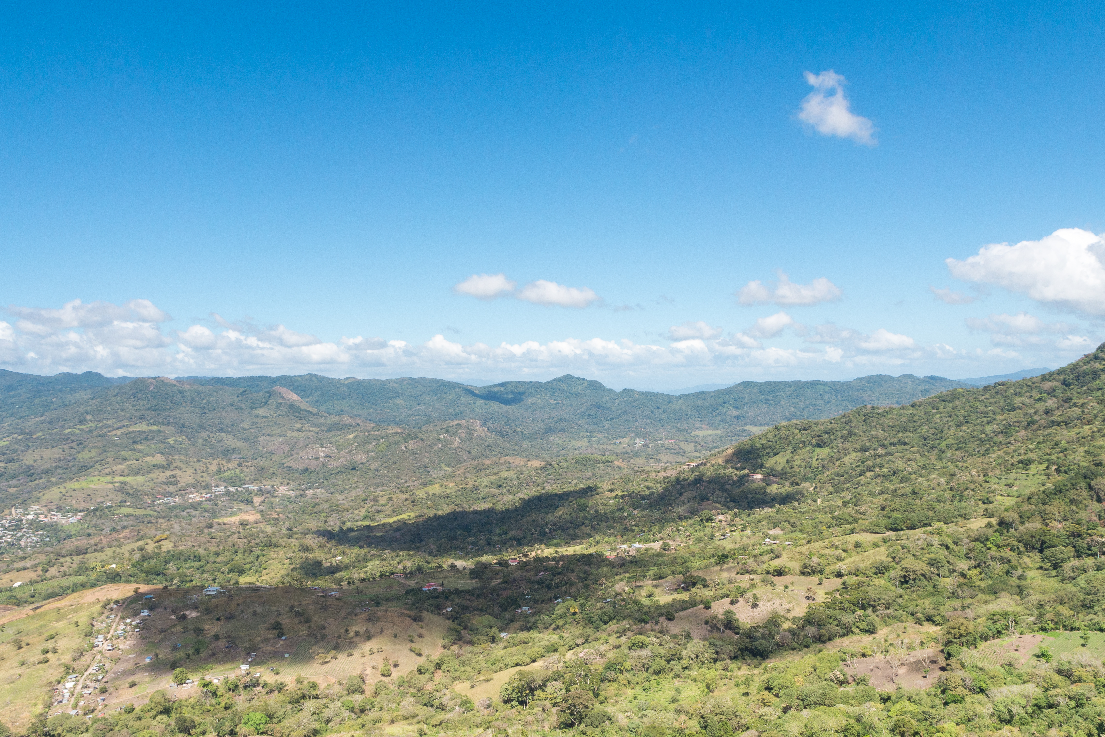 Photos_végétation_et_paysages_Costa_Rica_et_Nicaragua_(75_sur_137)