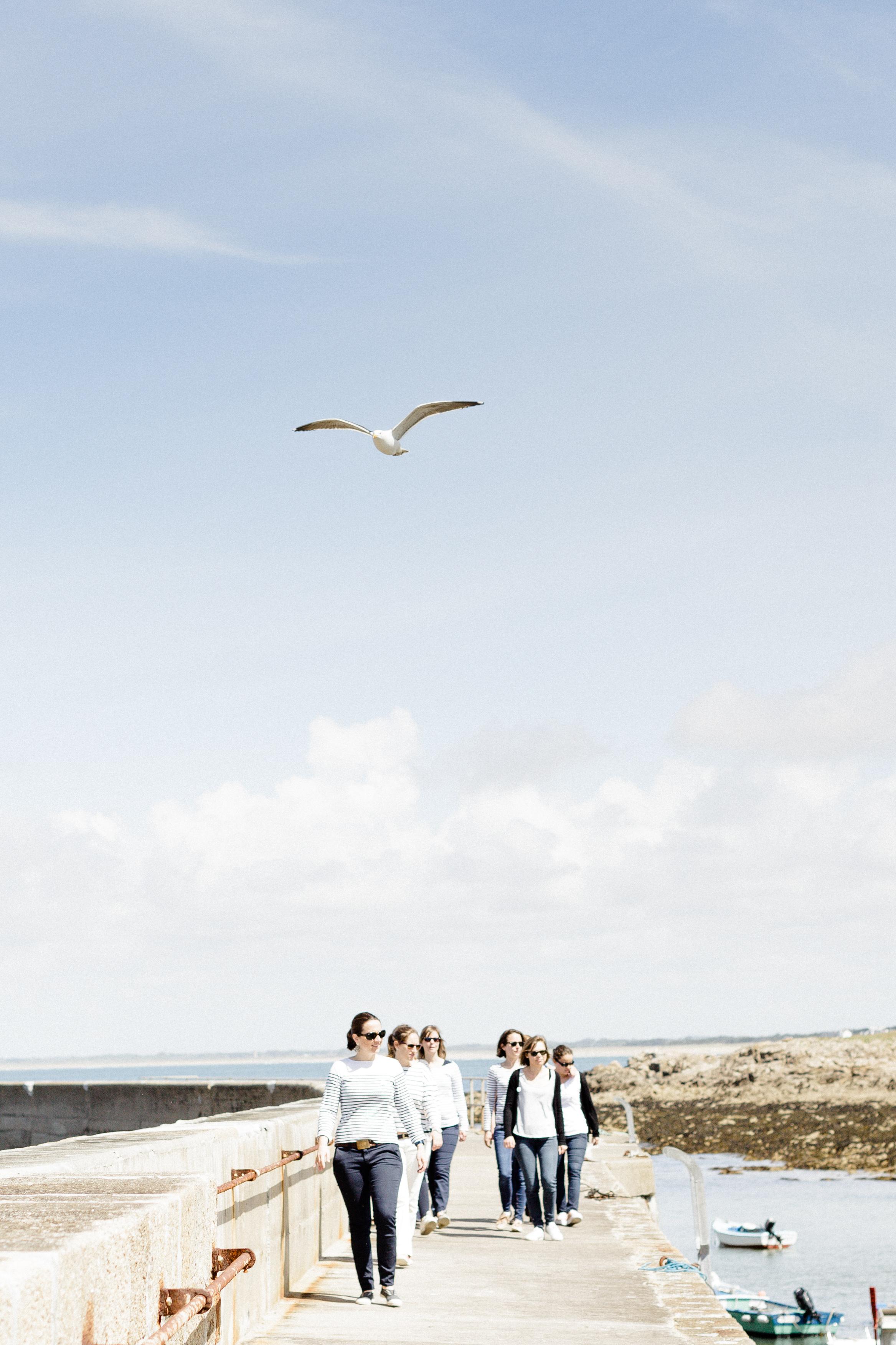 Evjf Bretagne Morbihan Vannes LV  (14)