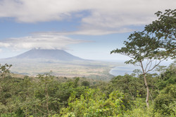 Photos_végétation_et_paysages_Costa_Rica_et_Nicaragua_(31_sur_114)