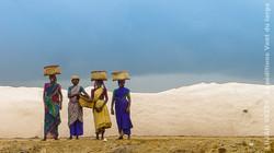 India trek (14)