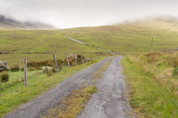 Irlande - Connemara -  mai 2017-52