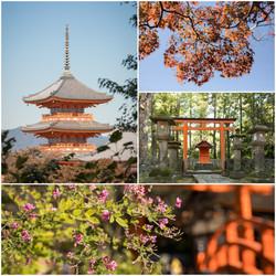 Japon Lilian Vezin Photographie (3)