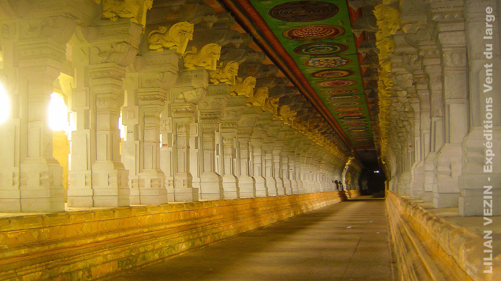 India trek (16)