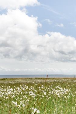 Photographe-Mariage-Vannes-Belle-île