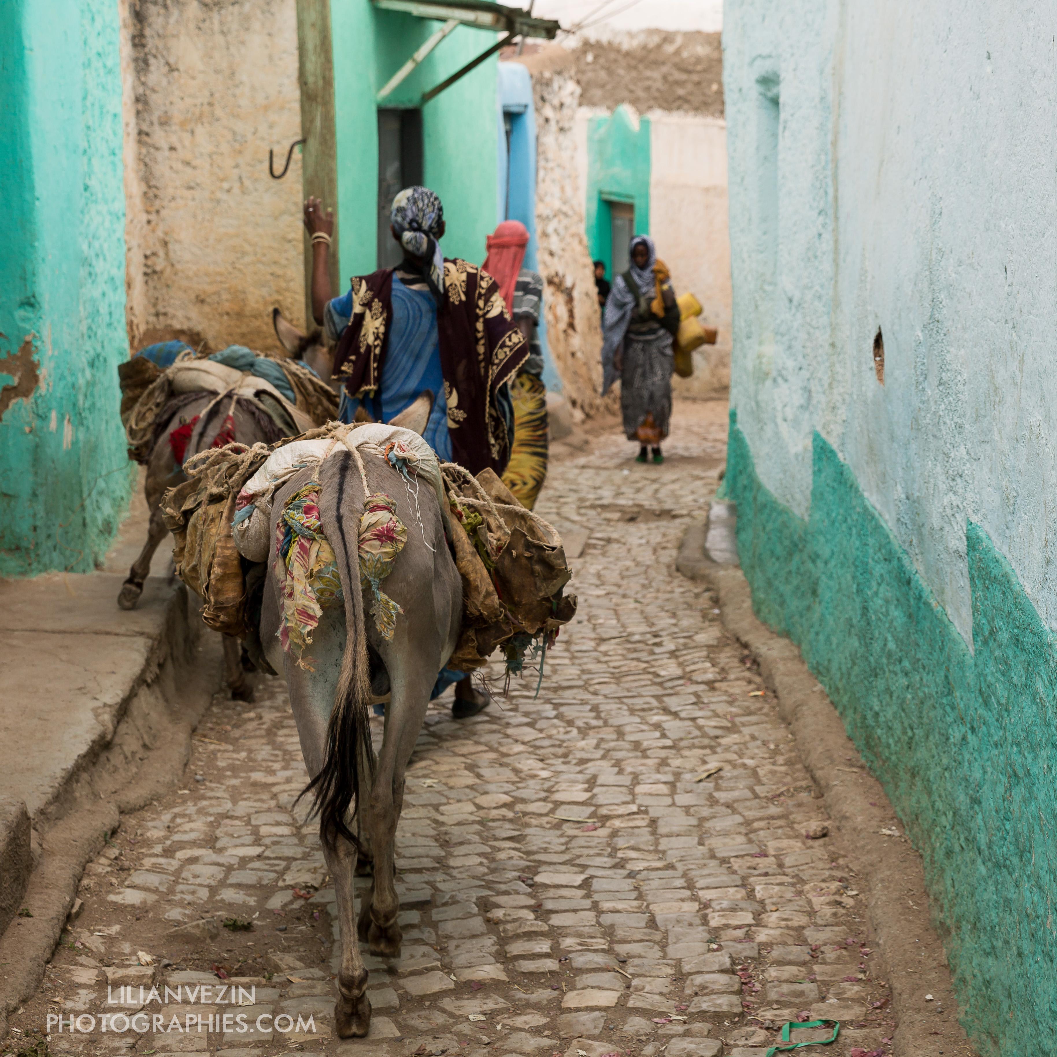 Abyssinie_Harar_Couleurs_signée-37