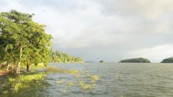 Photos_végétation_et_paysages_Costa_Rica_et_Nicaragua_(6_sur_137)