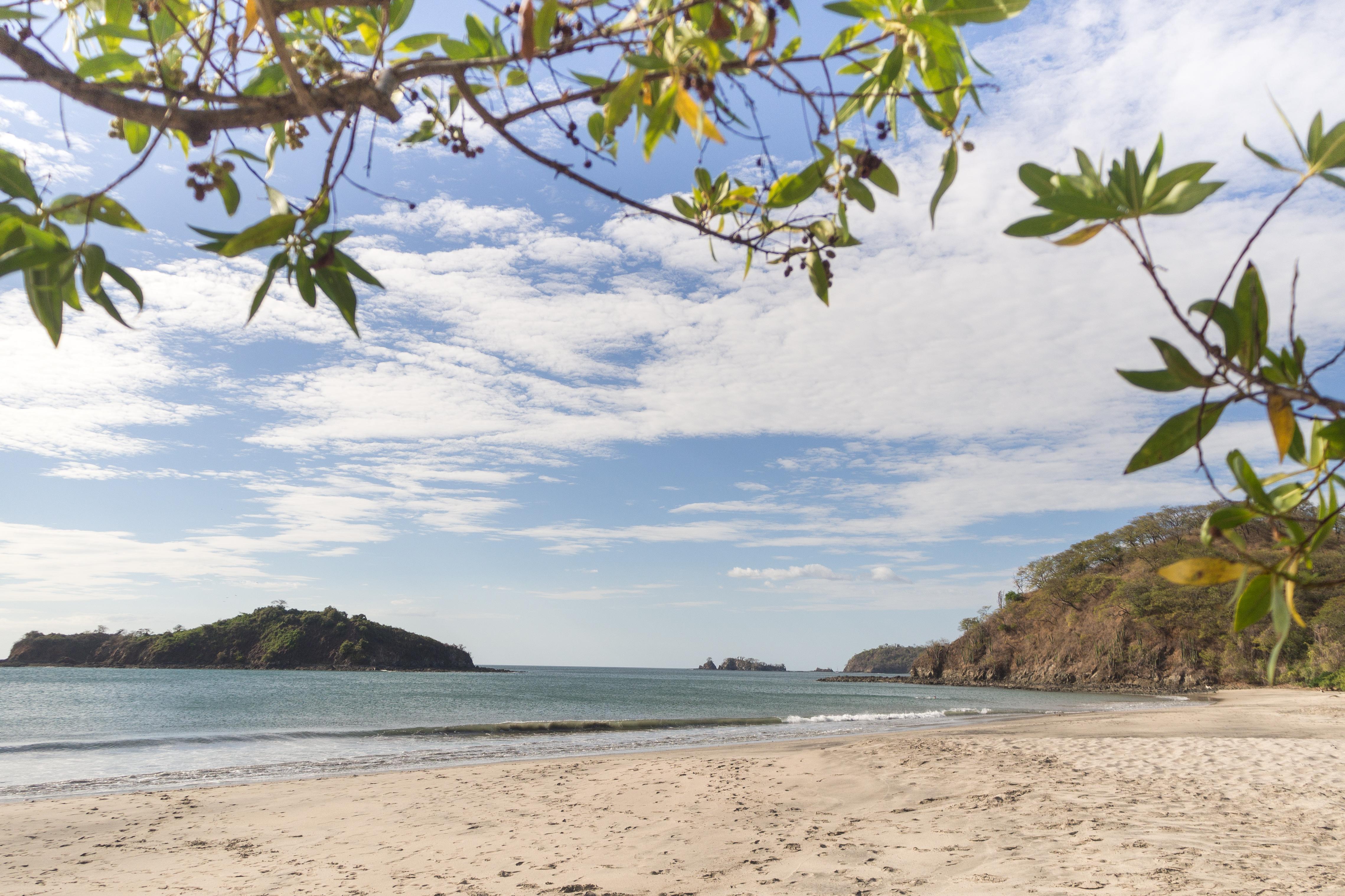 Photos_végétation_et_paysages_Costa_Rica_et_Nicaragua_(20_sur_114)