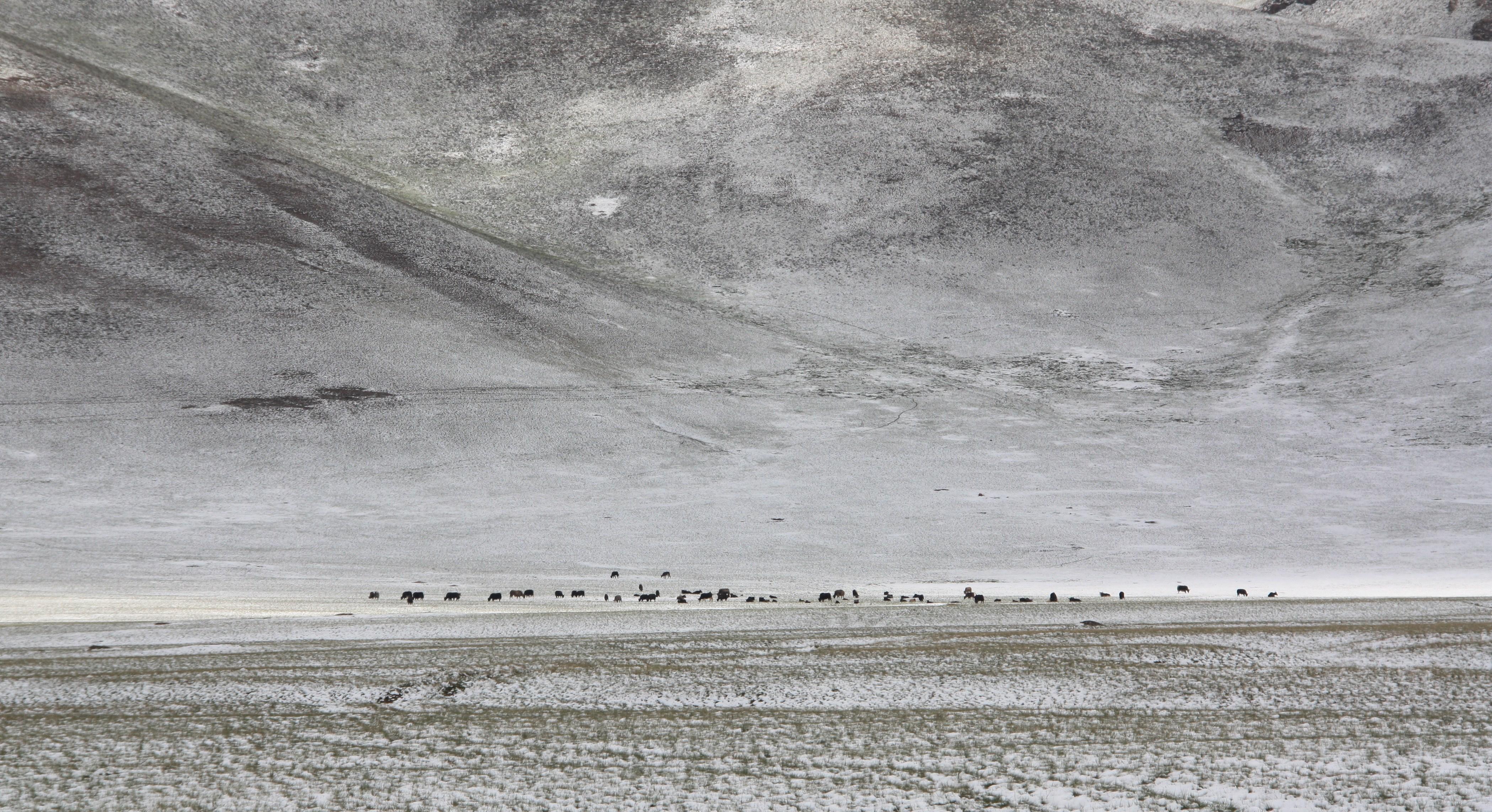 Asie Centrale Terre d'aventures - Lilian