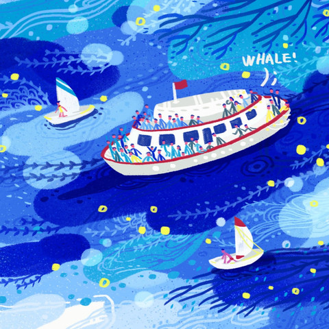 Animated Illustration-Whalewatch