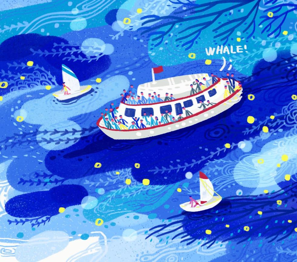 whalewatch_edited.jpg