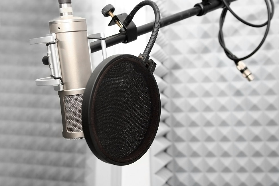 Guitar Lessons Englewood, Voice Over Artist