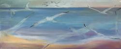 Gulls at sea