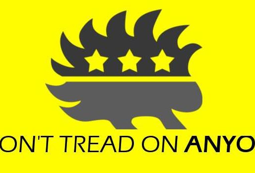 Online Libertarian National Convention Held This Weekend