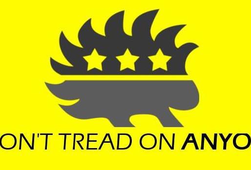 Why Am I A Libertarian?