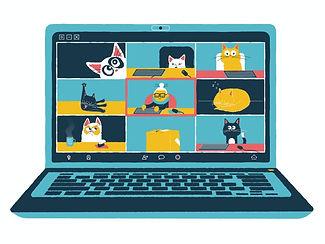 cats zoom.jpg