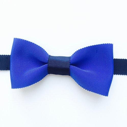 noeud papillon bleu ROI pour homme LEPRISME Bowtie