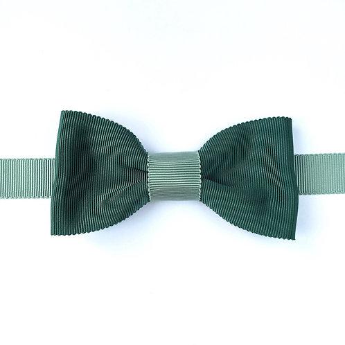 Noeud papillon vert anglais aperçu de face avec tour de cou