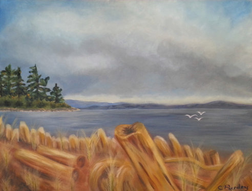 43 Moody Goose Spit by Coleen Purdy-Morrison