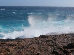 Kate Brown Windy Aruba