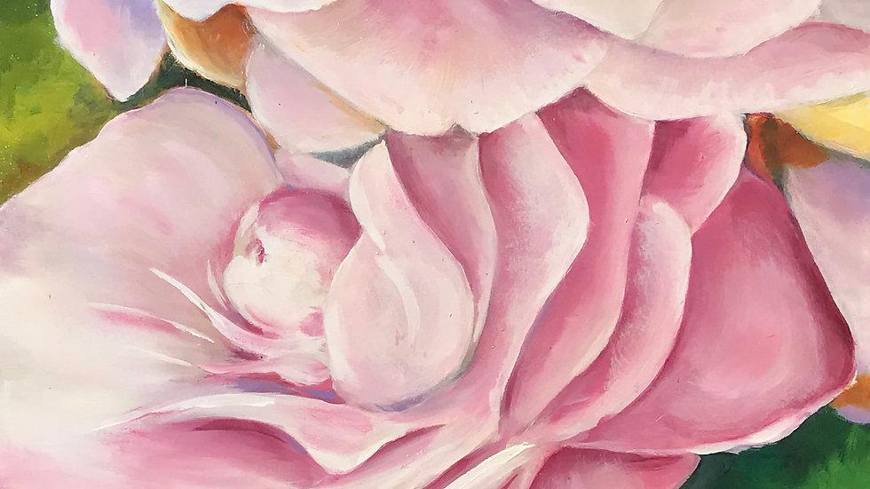 Roses 105KB